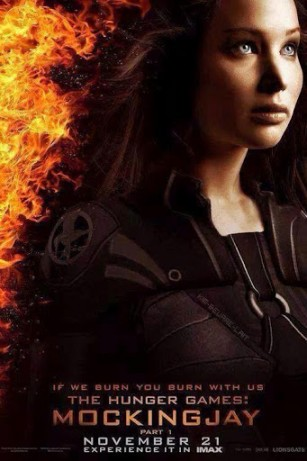 The Hunger Games: Mockingjay image